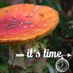RT @CamPuur: Niet vergeten vannacht de #klok een uurtje terug te doen!! Groetjes Campuur http://t.co/bM5a3Wv9vQ