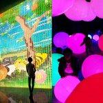 チームラボ、世界初の大展覧会「踊る!アート展と、学ぶ!未来の遊園地」を東京・お台場で開催 http://t.co/bWjlbB8PBk http://t.co/AYraznnfO7