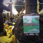 RT @AboutMallorca: #mercat de Sant rescat. Plaza del Cuadrado. #palma hasta las 20h. Con #música en directo! http://t.co/BFYeuNnmLx