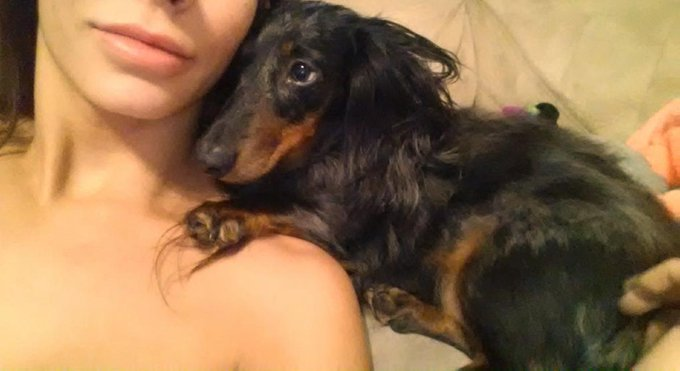 The moment I wake up, Weiner be right next to my face ;] #LOVE #WeinerDog http://t.co/KYd69UICVm