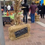 @springridgefarm thanks so much for these corn stalks! Perfect for #TreatsinourStreets @MadyDevelopment http://t.co/pPbEzGifol