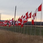 RT @vysterca: Little town of Sylvan Lake AB showing Canadian pride and support for all our fallen. Proud to be Canadian. http://t.co/bbfQbfViVP