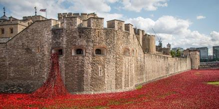 In case you missed it, watch this lovely timelapse of the Tower of London's poppies.  http://t.co/qkt5f7AqXM http://t.co/ZapclX4c2k