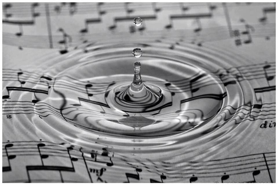 """惹かれる。 """"@gede_prama: At home, life is a beautiful music http://t.co/YkdeCx1mvi http://t.co/q2PxJ7xA1C"""""""