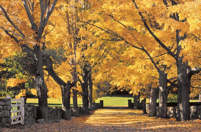 Go take a hike this weekend. We have a bunch of gorgeous #fall #hikes to tell you about http://t.co/qCmdTuJhVt http://t.co/flRijfc0R6
