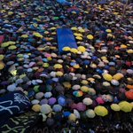 RT @ChannelNewsAsia: HAPPENING NOW: A sea of umbrellas in Admiralty, as #OccupyCentral protesters mark one month of street protests http://…