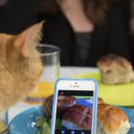 Your Instagrams are ruining brunch. http://t.co/ziQJueD23V http://t.co/wwAb33BqLv