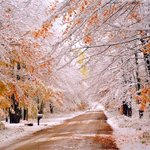 RT @TerriLyndie: This is what happens when snow falls in autumn! #TerriGostolaPhotography http://t.co/yCTkVvq4s4 #PureMichigan #beauty http://t.co/01RITUMBYY