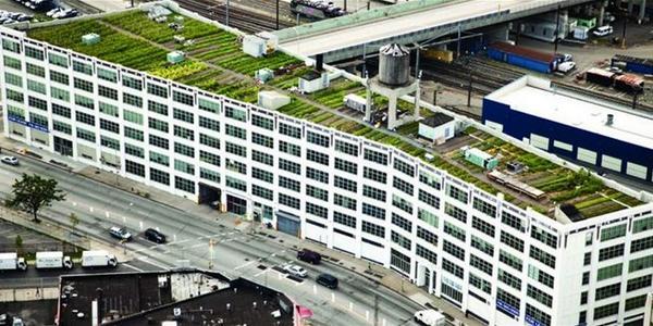 Goed voorbeeld doet volgen dus bij deze 's werelds grootste #daklandbouw project: @BrooklynGrange -#groen & #duurzaam http://t.co/3c9rCfDMdY