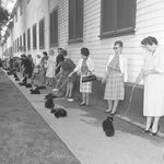 Black cat casting call, Los Angeles, 1961 http://t.co/mhHc2CCp0k