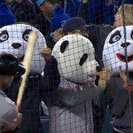 Happy pandas. #Game7 http://t.co/EkSewpca2s