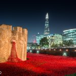 RT @Batteryhq: The ceramic poppies around the Tower of London by night: http://t.co/Yt6BI7yECX