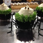 SPOOKY Cupcakes! TODAY at @stjacobsmarket!! http://t.co/figzShAexs