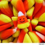 Happy #NationalCandyCornDay | #Fact Candy corn was created in the 1800s to introduce corn sugar to consumers http://t.co/MJPPpj2Dcd