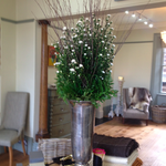 We are loving our winter #flower display @flowersbycaine #Harrogate http://t.co/lNp9uHw4ZF