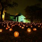 Stoddard Ave #PumpkinGlow begins tonight behind the DAI, dont miss it! http://t.co/BdQ9S8waGA #halloween #Dayton http://t.co/qyS1nm592z