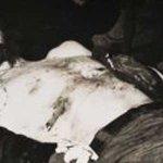 Fotografías del Che salen a luz a 47 años de su muerte---http://t.co/Ox0UfUcZlb http://t.co/0eWAvTQFpi