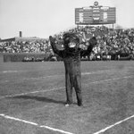 The old #Chicago #Bears mascot stands tall inside the friendly confines of #WrigleyField ~ @thekapman @DavidHaugh http://t.co/QwxbCfBLwG