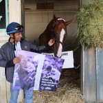 ONE MORE DAY! @EspinozasVictor and @CalChrome close out our @BreedersCup countdown! #BC14 http://t.co/y8yzzgMi90 http://t.co/luIrvadJLL