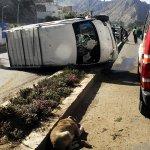 Un can provoca un choque múltiple en la avenida Costanera http://t.co/RXRpoNUQPd http://t.co/6kIyBltCzc