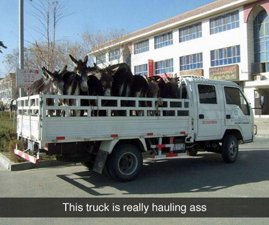 Really hauling ass there. http://t.co/btDbvrfiBh