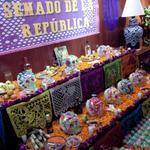Disfrutamos de los tradicionales altares de #TodosSantos en el @SenadoMexicano. @Emilio_Gamboa_ @DavidPenchyna http://t.co/Mobx2PCAEb