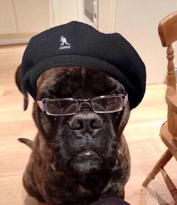 RT @KittyCalamities: Samuel Jackson lookalike winner is.... http://t.co/R7szk68CSe