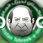 'Go Nawaz Go','Diesel' slogans rock KPK assembly Read More : http://t.co/7fItUSc1J4 http://t.co/JborYttXFb