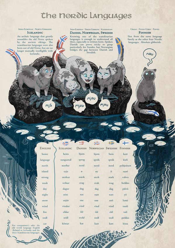 Scandinavian #languages illustrated with cats. http://t.co/8ZQ282ECyF http://t.co/7pCOIKTwuZ
