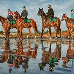 .@GaiWaterhouse1 getting her horses ready for #DerbyDay @FlemingtonVRC @petchyheraldsun http://t.co/zKFuQPeo3F http://t.co/NCYMXQ6SN0