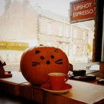 Happy Halloween from @upshotespresso :3 #meow #halloween #sheffield http://t.co/ARbWJQAlpb