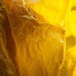 "#SAVEZHOVTEN ""Жовтнева революція"". Найбільш жовта акція осені! http://t.co/evM8BzPsbM / фото Ганни Грабарської http://t.co/8NOyNemEc3"