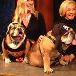 Cutest dogs ever @ZeldaWisdom and boyfriend Otis - watch now! #liveonk2 http://t.co/3yc8v1zWkg