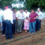 @ferortegab atestigua en #Nohacal arranque del proyecto de cultivo de Stevia, con la siembra de las primeras 21has. http://t.co/qO5Z8Cz6XT