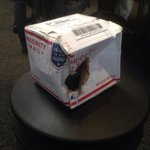 #fbf that one time @USPS didnt lose my package. #blessed http://t.co/Dmb22g7PpB