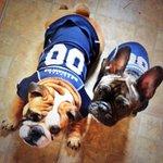 @NFLonFOX #GoHawks @KjellKDL http://t.co/5vNOc4Uyz4