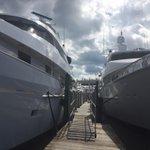 Beautiful day for #FLIBS2014 @boatshowupdates @VISITFLORIDA @visitlauderdale @FtLauderdaleSun #yachts #brokerage http://t.co/YSUoJqlTiG