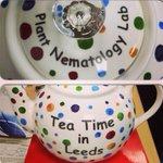 New lab teapot! #nematology #leeds http://t.co/z3DwGgOuyu