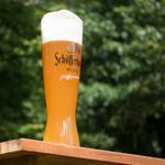 """#UnaBuenaFrase """"Llegó la mejor Cerveza de Alemania"""" @SchofferhoferUS #EnBodegaAmparo http://t.co/cRz7lIFUzR"""