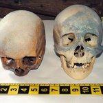 No Halloween, crânios são achados com livros sobre satanás e bruxaria http://t.co/ppZgU7j6kC #G1 http://t.co/khJ5ftjK9I