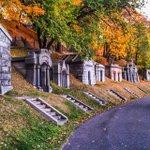 #thisisnewyorkcity: Green-Wood Cemetery @GreenwoodHF (Photo: @ty__iv) #seeyourcity #brooklyn #nyc http://t.co/6x5hJ7HSUJ