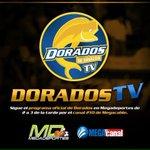 Hoy no te pierdas #DoradosTV!! Te presentamos a los #DoraditosSub8 y además tenemos regalos!! De 2 a 3 por el 210!! http://t.co/HiRRcKW0wM