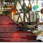 Les comparto este volante que me hicieron llegar mis amigos. Nos invita a defender nuestras tradiciones #Hanalpixan http://t.co/esXOiKE0qA