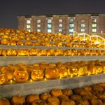 If youre near Kings Cross tonight - theres a fantastic display of 3,000 pumpkins - complete with candles! http://t.co/JiZQpoM30s