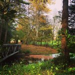 A very autumnal Millfield campus awaits the pupils return from the half-term break http://t.co/NTAB917Ob6