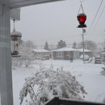 Just Thinking only 5 hrs away from me not Looking Good in Sudbury http://t.co/JKrvVjdo9F