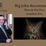 Happy #Halloween! This weekend, theres spooky fun to be had at @zsllondonzoos Boo at the Zoo #BigJohnRecommends http://t.co/DAIsfzTsBZ