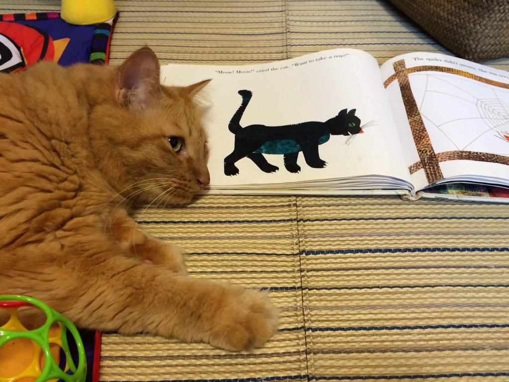 絵本に自分が出てこないので真似をする様子。 http://t.co/tIcBfwBBA3