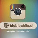 ¡Tenemos Instagram! Síguenos y revisa las mejores fotos y curiosidades del día http://t.co/EVhE3gXCka http://t.co/V5EEx8LRLu