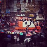 Panda Panda! View from our office window. #SFGiantsParade #WorldSeriesChampions #ChampionsTogether #HappyHalloween http://t.co/bTYXwQsCoz